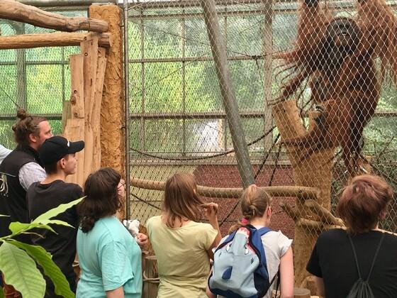 Im Zoo mit dem Lions Club Dortmund